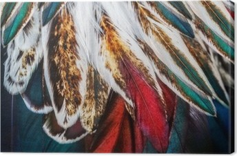 Tuval Baskı Bazı kuş Parlak kahverengi tüy grubu