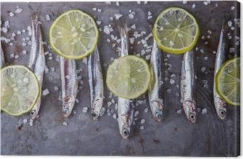 Tuval Baskı Hamsi Taze Deniz Fish.Appetizer. seçmeli odak.
