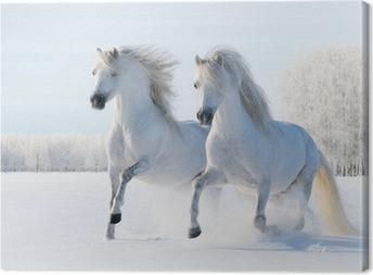 Tuval Baskı İki beyaz atlar kar alanında dörtnala