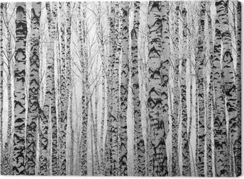 Tuval Baskı Kış huş ağaçları alaylı vücutları