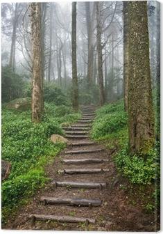 Tuval Baskı Orman Yolu