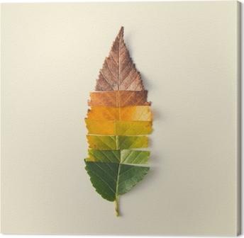 Tuval Baskı Renkli sonbahar yaprakları yaratıcı düzen.