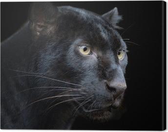 Tuval Baskı Siyah Panter