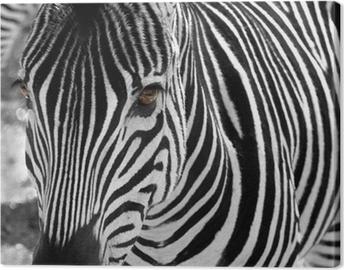 Tuval Baskı Zebra
