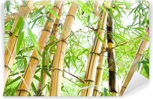 Tvättbar Fototapet Bamboo skog