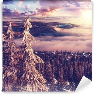 Tvättbar Fototapet Vinter i Norge