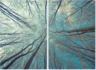 Tweeluik Bomen Achtergrond van het Web
