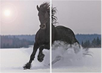 Tweeluik Friese paard op sneeuw