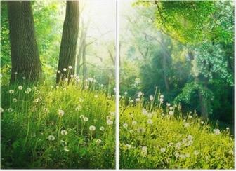 Tweeluik Voorjaar Nature. Mooi Landschap. Groen gras en bomen