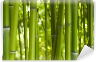 Bambus bambu 06 Vinyyli Valokuvatapetti