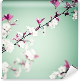 Kevät kukka tausta Vinyyli valokuvatapetti