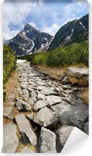 Kiillottaa Tatra-vuoria Vinyyli valokuvatapetti