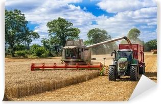 Mädrescher und traktor mit ladewagen bei der getreideernte - 2899 Vinyyli valokuvatapetti
