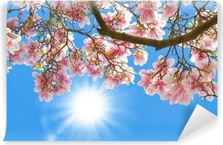Magnolia auringossa Vinyyli valokuvatapetti