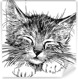 Nukkuva kissa Vinyyli valokuvatapetti