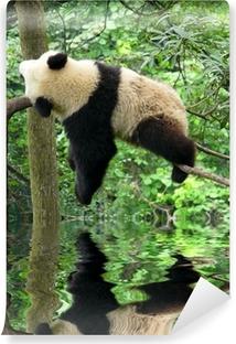 Panda Vinyyli valokuvatapetti