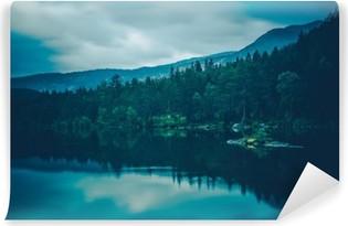 Rauhallinen järvi maisema Vinyyli valokuvatapetti
