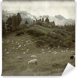 Teksturoitu vanha paperi tausta Vinyyli valokuvatapetti