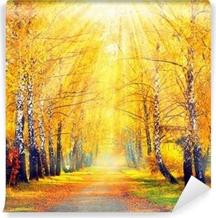 Autumnal Park. Efterår Træer og blade i solstråler Vaskbare Fototapet
