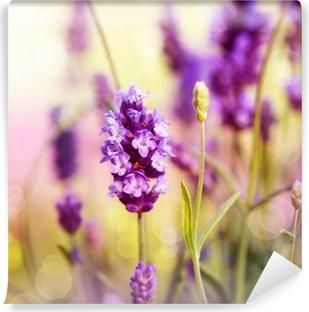 Vaskbar fototapet Lavendel felt.