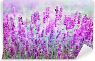 Lavendel Vaskbare fototapet