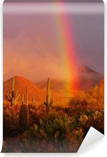 Rainbow solnedgang ved Saguaro National Park, Arizona, USA Vaskbare fototapet