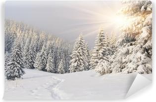 Smukke vinterlandskab i bjergene. Solopgang Vaskbare Fototapet