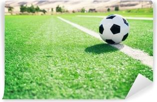 Traditionel fodboldkugle på fodboldbane Vaskbare fototapet