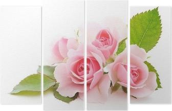 Vierluik Roze rozen
