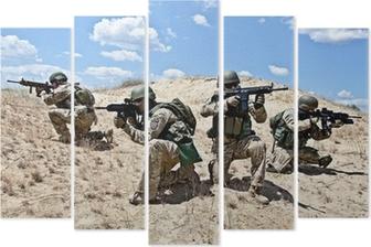 Vijfluik Militaire operatie