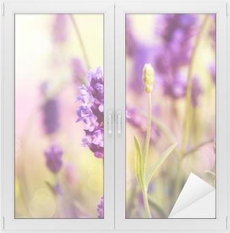 Lavendel felt Vindue og glas klistermærke