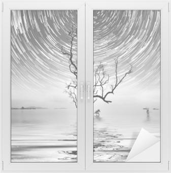Vindu- og glassklistremerke Alene tre og stjerne sti fotografering for ditt interiør.