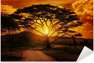 Vinilo Pixerstick Africa sunset
