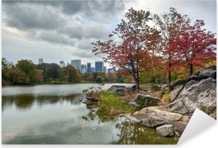 Vinilo Pixerstick Central Park el lago