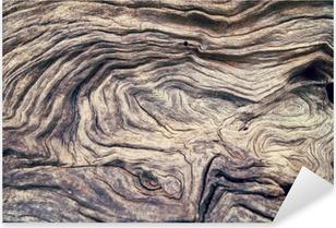 Vinilo Pixerstick Corteza de árbol textura de la madera