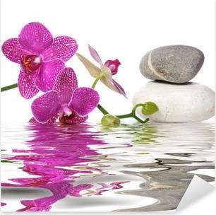 Vinilo Pixerstick Einfach schöne Orchideen