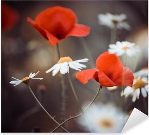 Vinilo Pixerstick Flores de amapola rojas y margaritas silvestres