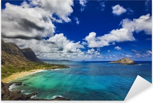 Vinilo Pixerstick Islas de Hawai