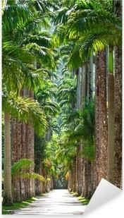 Vinilo Pixerstick Jardín Botánico. Rio de Janeiro