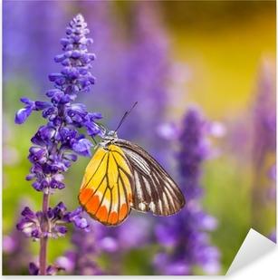Vinilo Pixerstick Los insectos y las flores