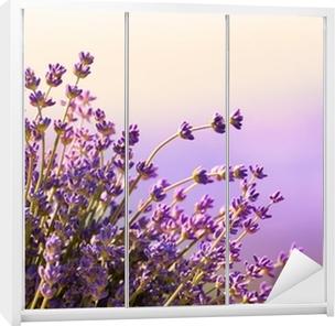 Vinilo para Armario Flores de lavanda florecen el horario de verano