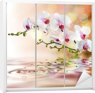 Vinilo para Armario Orquídeas blancas sobre el agua con una gota