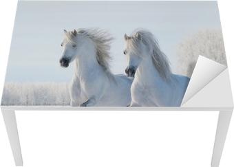 Vinilo para Mesa y Escritorio Dos caballos blancos galope en el campo de nieve