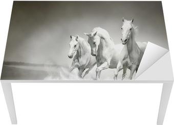 Vinilo para Mesa y Escritorio La manada de caballos blancos corriendo a través del agua