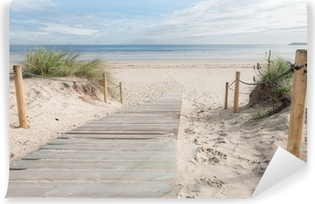 A path to the beach Vinyl Wall Mural