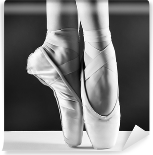 A photo of ballerina's pointes on black background Vinyl Wall Mural