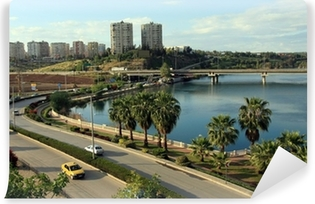 A view of Adana, Turkey Vinyl Wall Mural
