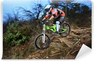 A young man riding a mountain bike downhill style Vinyl Wall Mural