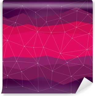 Abstract background, geometry, lines and points Vinyl Wall Mural