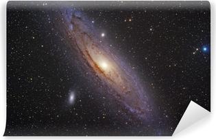 Andromeda galaxy Vinyl Wall Mural